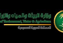 صورة وزارة البيئة والمياه والزراعة تعلن طرح 43 وظيفة للجنسين في كافة المناطق